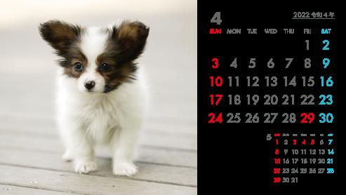 パノラマサイズプラケース卓上カレンダーA