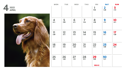 パノラマサイズプラケース卓上カレンダーB